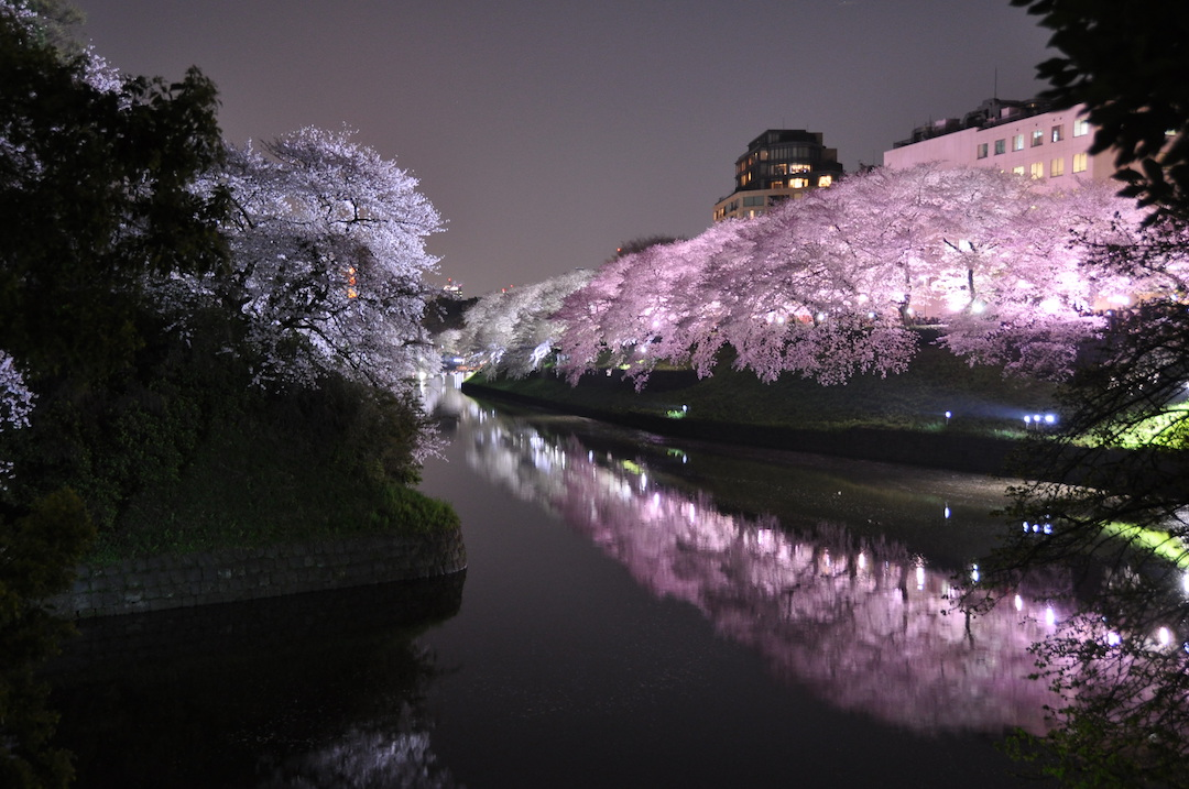 Tips, Tricks, Do's and Dont's When Travelling to Japan