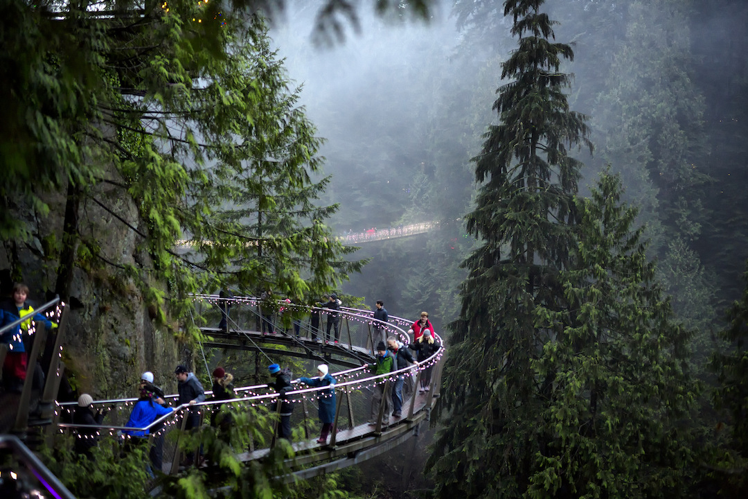 capilanosuspension