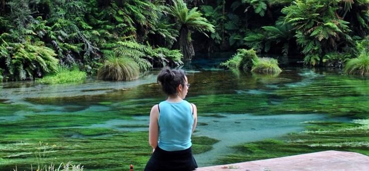 Blue Spring, Zew Zealand