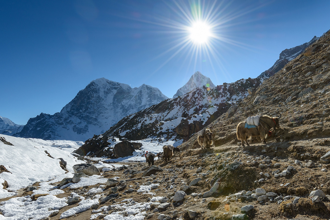Everest-Base-Camp-Nepa 12 Best reasons to visit Nepal in 2020l