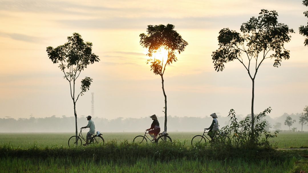 Indonesia vs Vietnam: Your Guide to Choosing - Days to Come