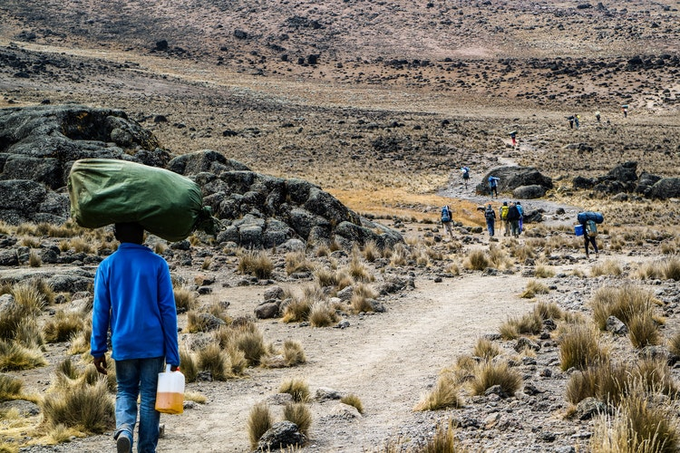 Porter carries a load along one of the routes to Kilimanjaro's summit