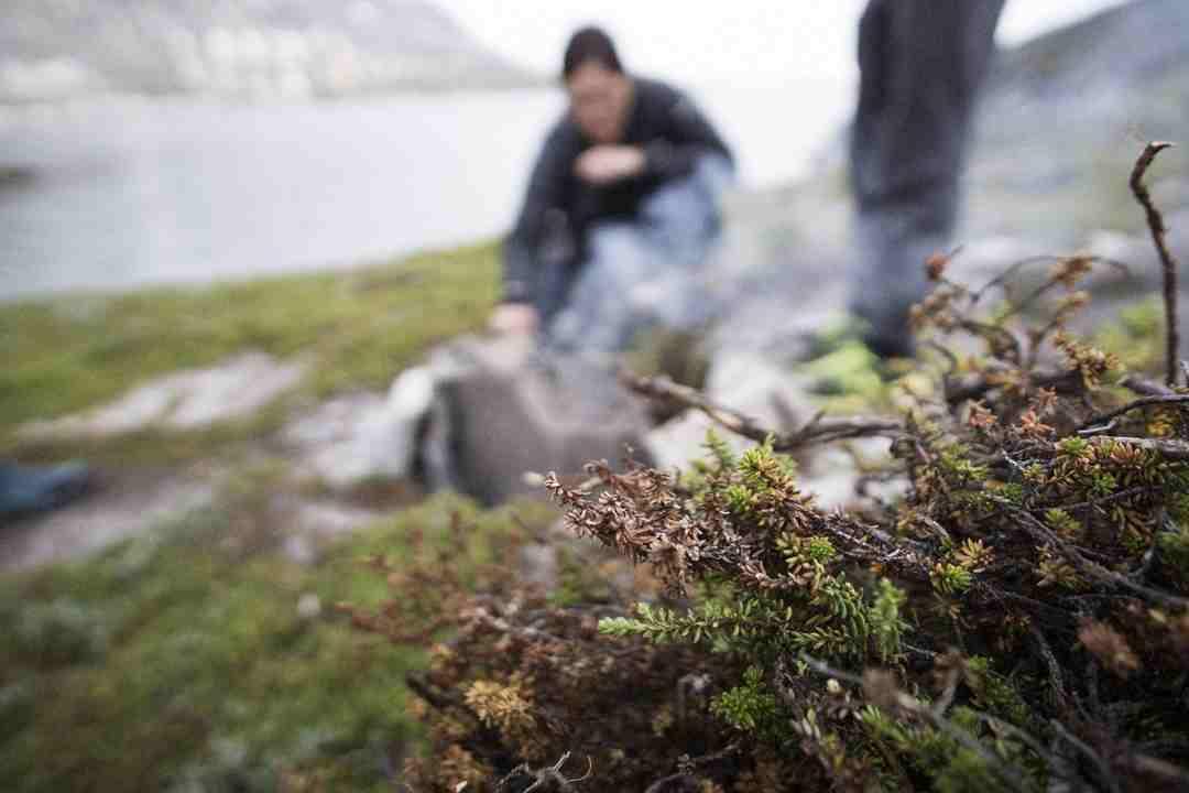 Campfire in Greenland