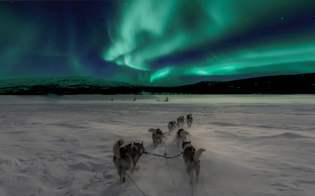 Chase the northern lights in Norway - enjoying Norway on a budget