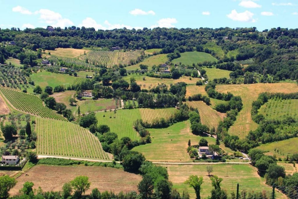 Rolling fields and stunning greenery of Orvieto, Italy