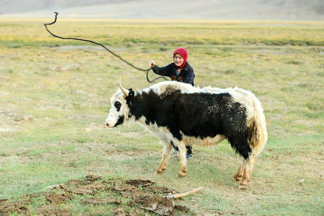 Tajikistan Trekking Tour
