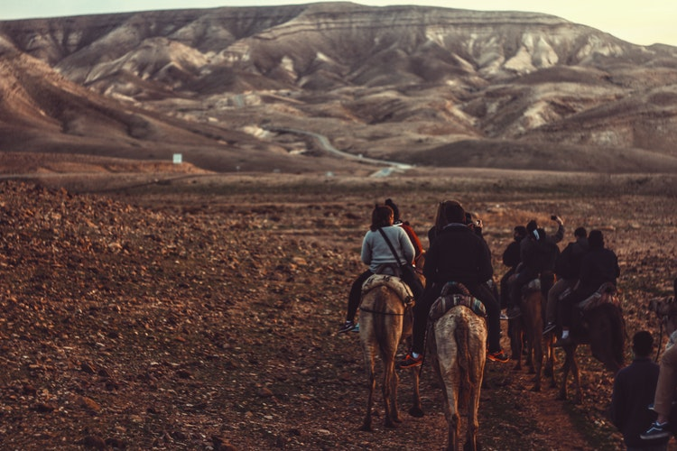 woman riding horse during daytime with a group of travellers