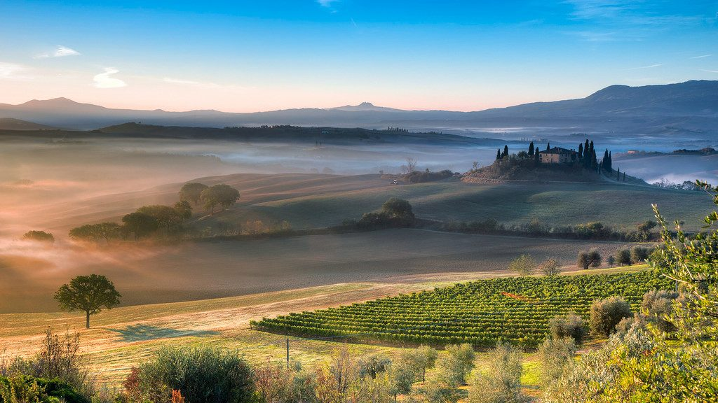 Mist carries across a beautiful vineyard in Tuscany
