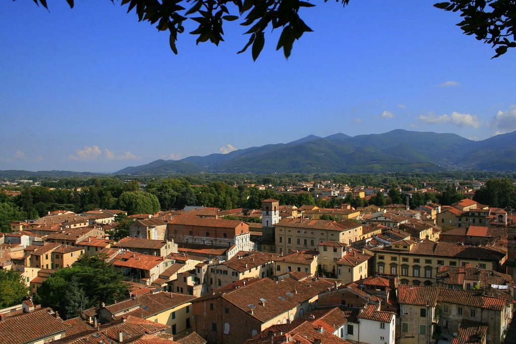 View from Torre Guinigi (Lucca) Taken in the ancient walled city of Lucca, Tuscany in Italy