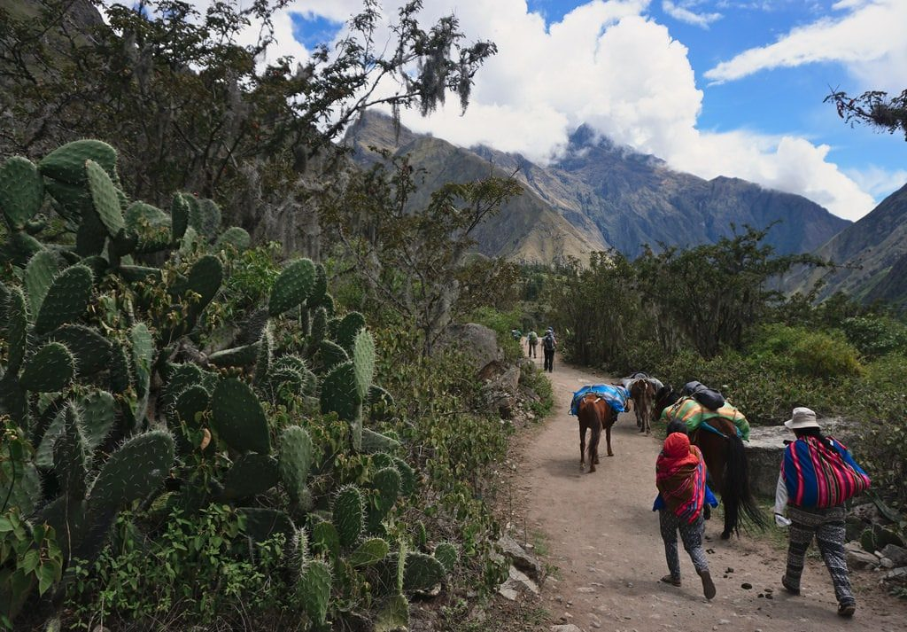 Inca Trail vs. Salkantay: Which Route is Best for You? - Days to Come