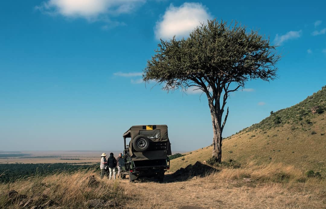 First Time Safari Tips: How to Get the Most Out of Your Trip
