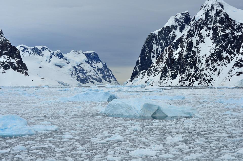 icy waters of Antarctica