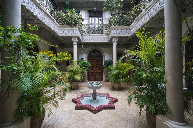 a courtyard with plants and a bird bath
