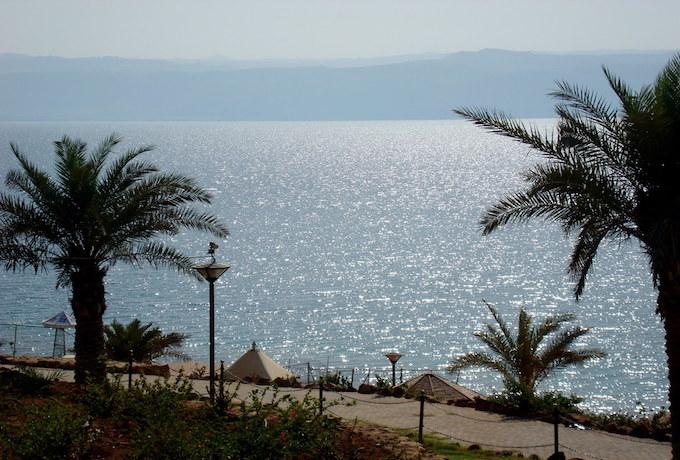 Palmtrees and a boardwalk on the dead sea in jordan