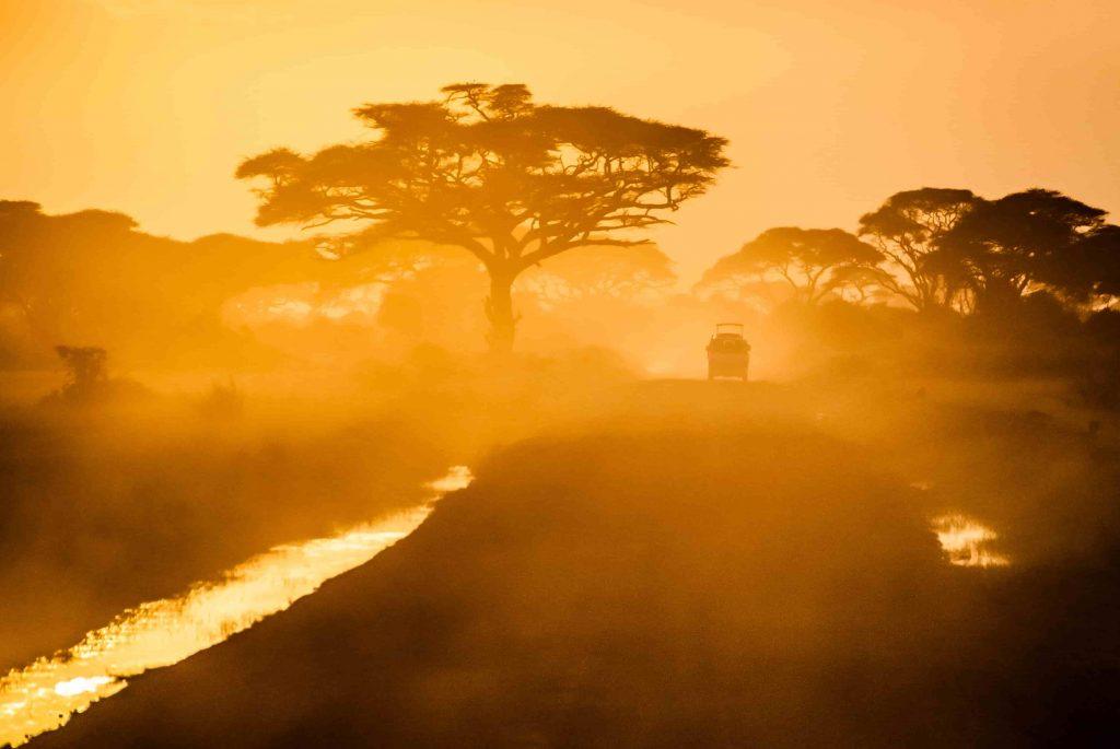 African savanna at sunset