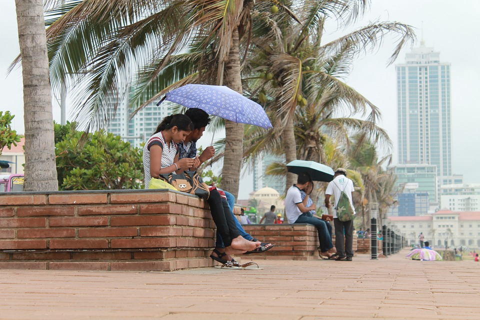 men and women sit below palm trees with colorful umbrellas