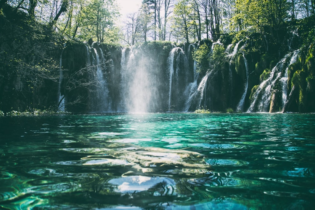 green trees and waterfalls during daytime
