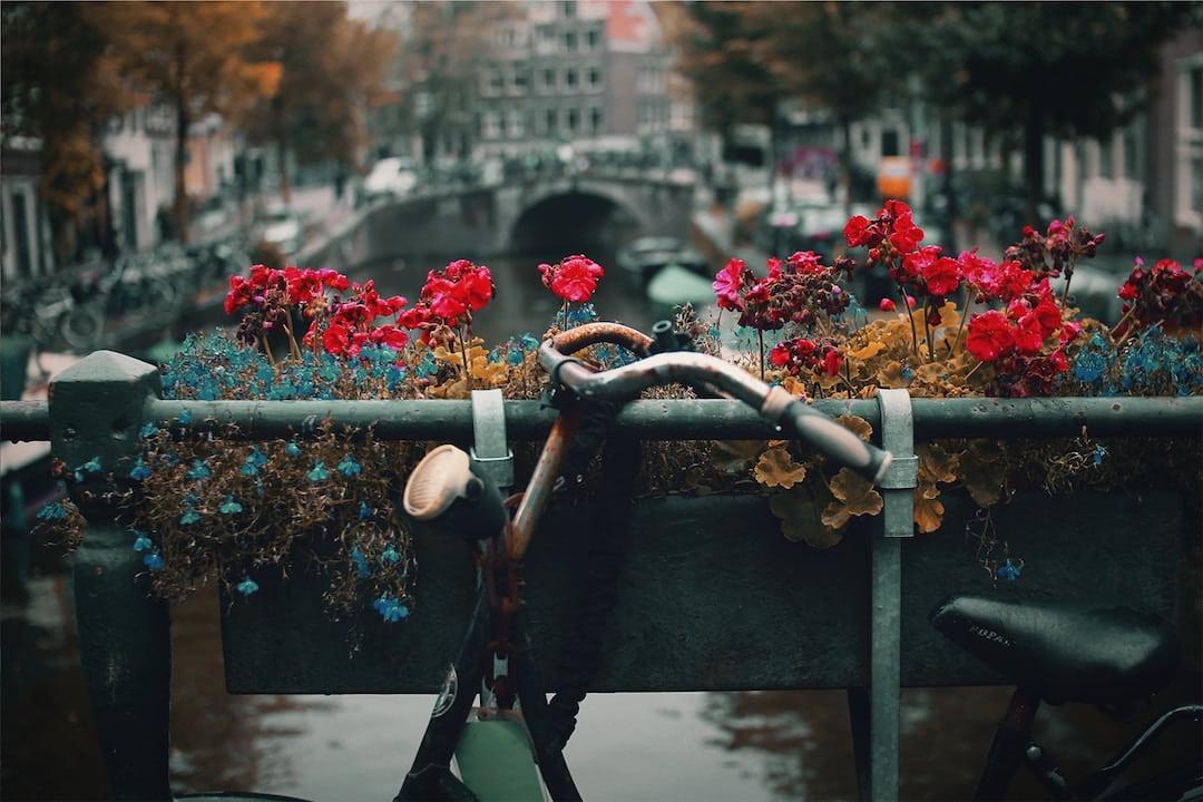 A bike resting against a canal bridge in Amsterdam
