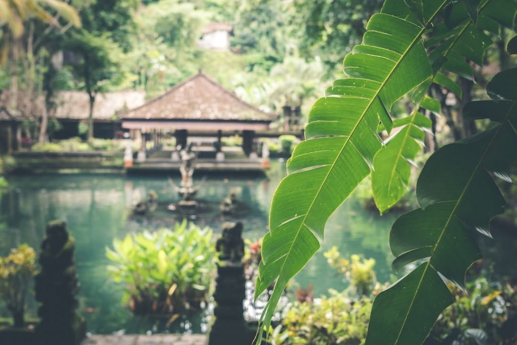Villa in Bali surrounded by water and lush jungle