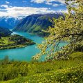 a shot of a green fjord and coast a body of emerald water