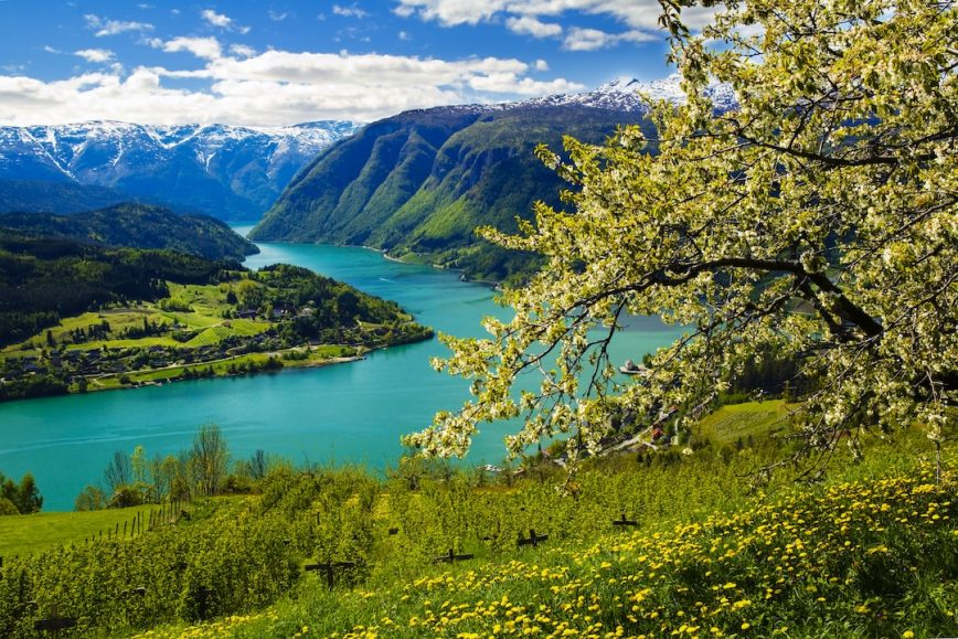 Best Ways to See Norway's Fjords
