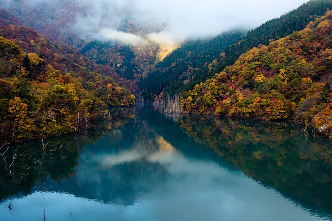 A valley in Japan during the fall