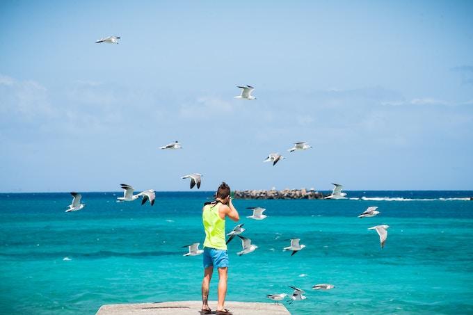 A boy photographing seagulls on a beach in Nassau, Bahamas