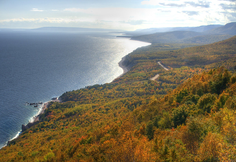 a trail winding its way through a blaze of orange, green and red trees along coastline