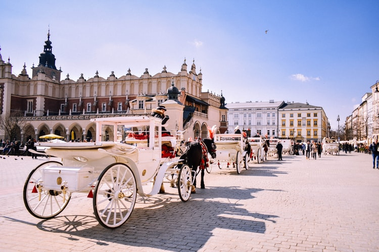 horse carriages in a pretty square