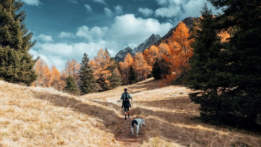 Backpacking in Europe With Your Dog