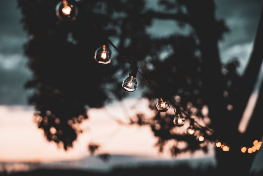 String lights hanging from a tree at sunset