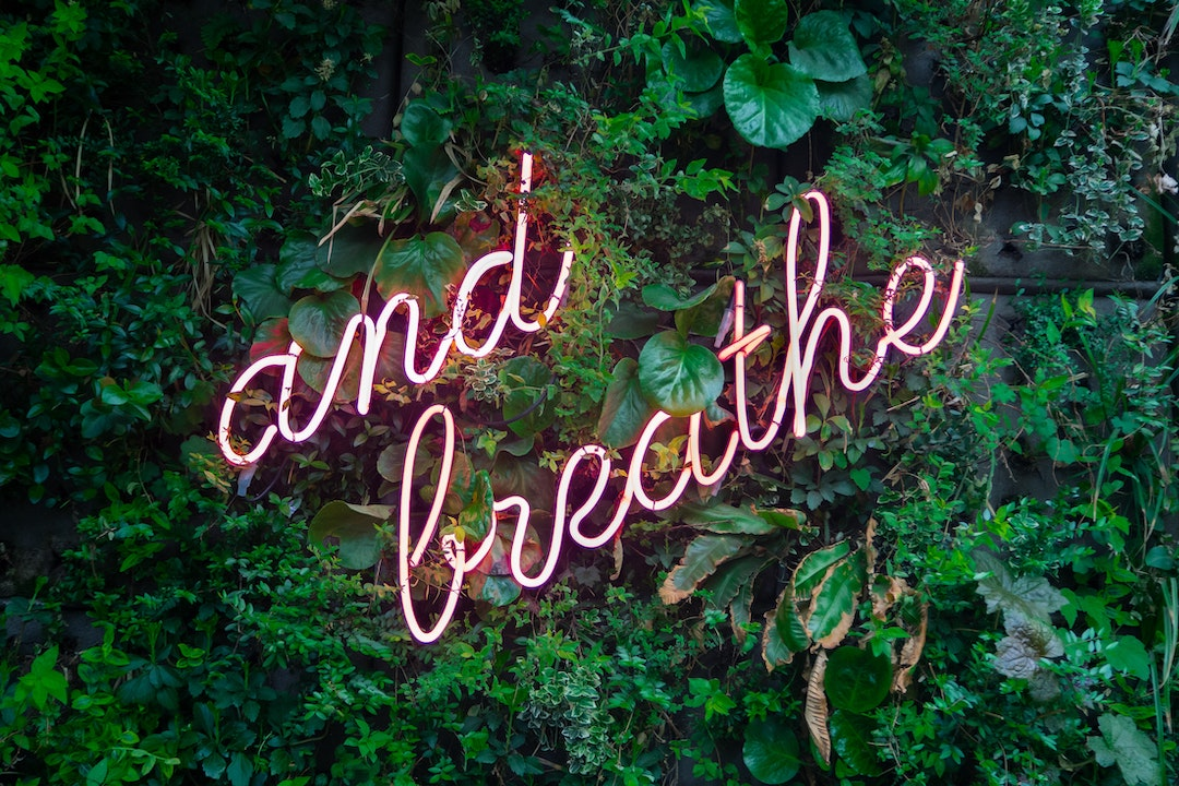 Neon sign that says and breathe on a wall with plants