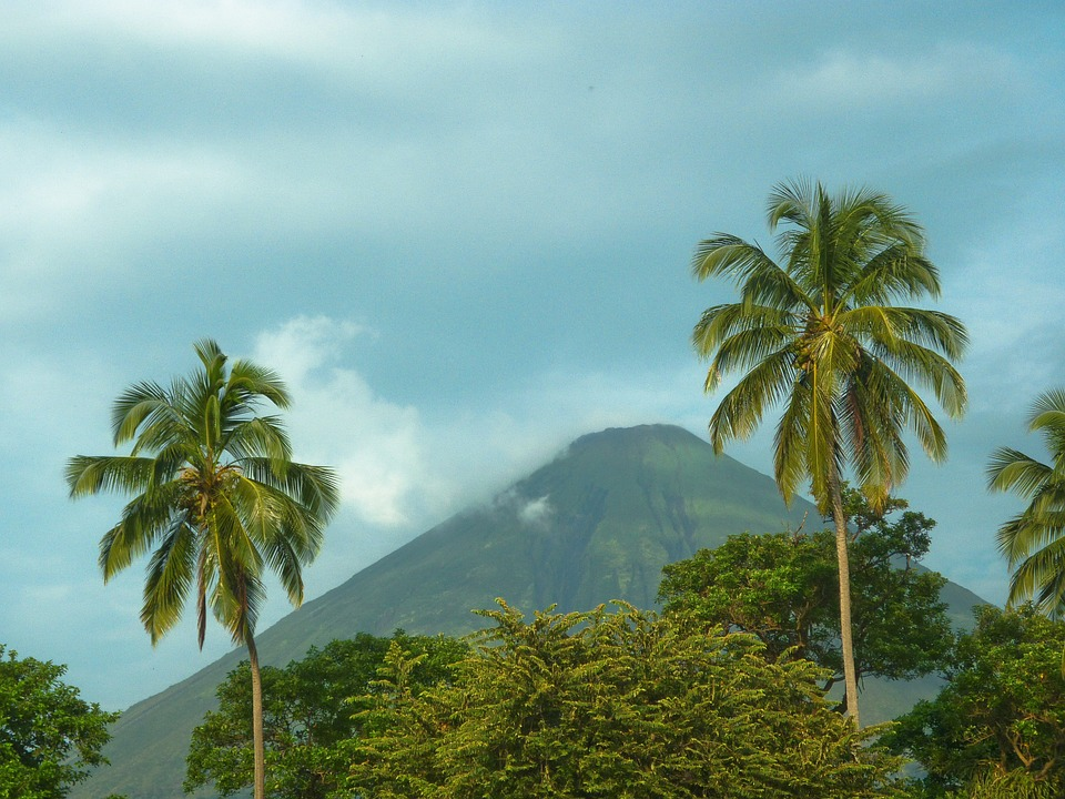 green palm trees soar into the sky with a volcano off in the distance