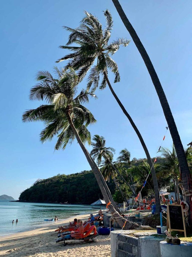People sitting in lounge chairs on a beach beside palm trees in Phuket