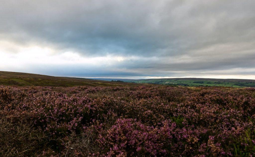 North York Moors, UK