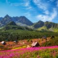 Gasienicowa Valley in Tatras Mountains