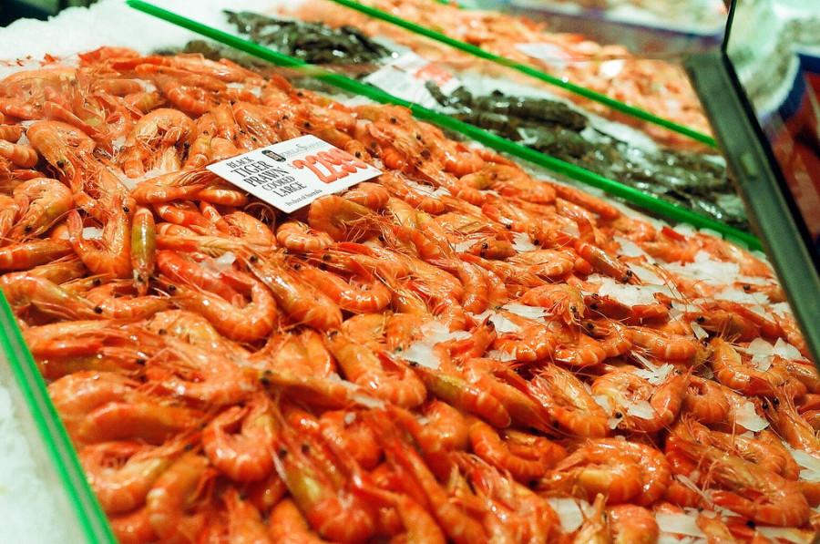 Prawns-Fish-Market