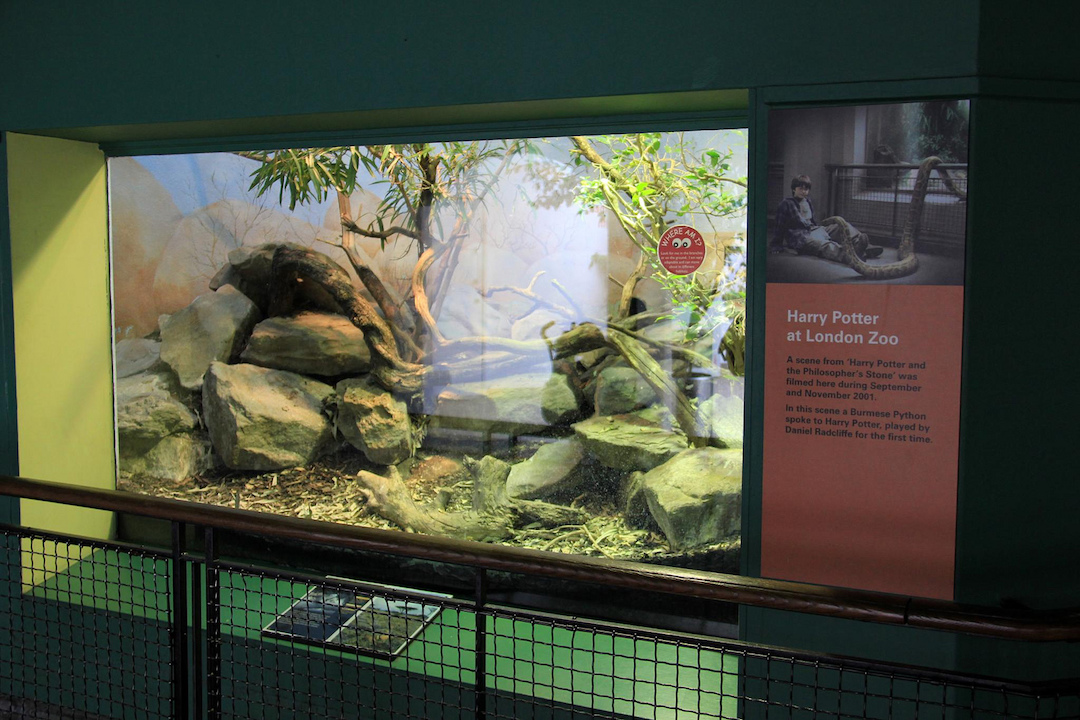 Reptile-House-London-Zoo-Harry-Potter